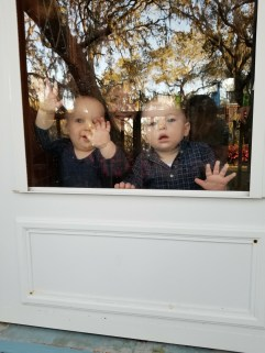 Micah and Gideon, almost 1yo's