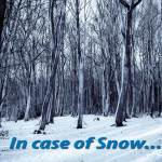 in-case-of-snow