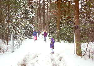 "Open access date for Presidents Day, 2-20-00: visitors walking back from ""the rock"""