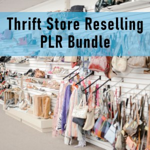 Thrift Store Reselling PLR