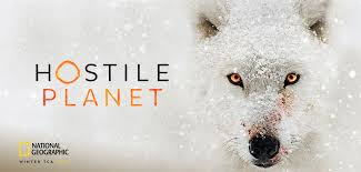 Interview with Oscar-winner Guillermo Navarro, executive producer of National Geographic's 'Hostile Planet'