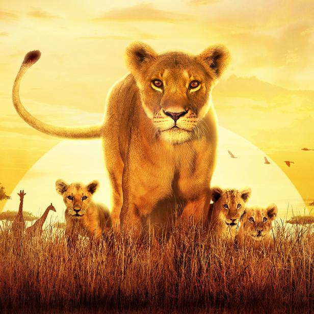 Discovery Channel's 'Serengeti' provides an empathetic and humanistic look at life in the African grasslands