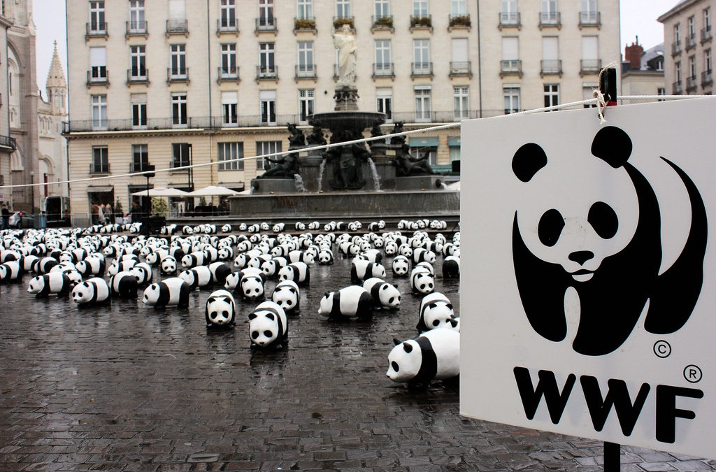 Opinion: OCSA Thrift for World Wildlife Fund is the greenwashing of colonial violence
