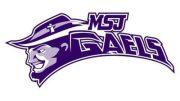 mount st. joseph high school football