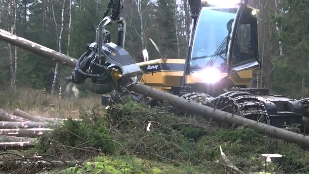 This Tree Cutting Machine Is Monstrous And Monstrously
