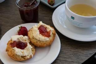 Lemon scones with vanilla cream and jam