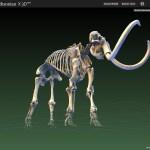O museu dentro de casa para ver e… imprimir em 3D