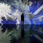 Flores fractais e paraisos artificiais