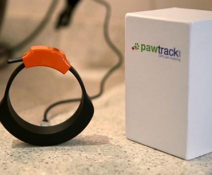 Gatos. Pawtrack, uma coleira com GPS