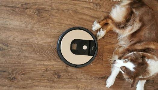 Teste: Roomba 976 na batalha contra os pêlos do meu cão