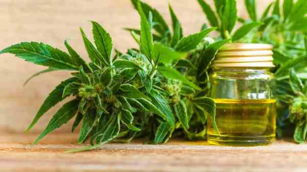 Indiana Is One Step Closer To Legalizing CBD Oil