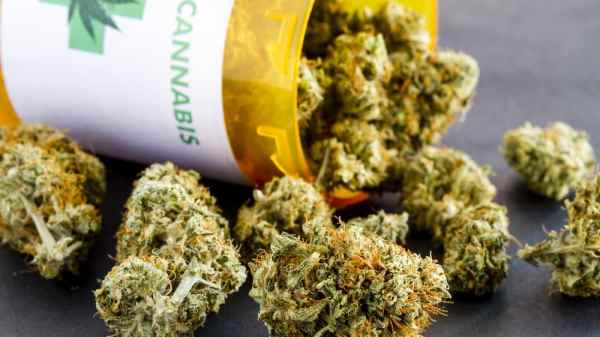 Healthcare NUK's NHS Will Not Prescribe Medical Cannabis to Those in Chronic Painetworks in Ohio Prohibit Doctors from Recommending Medical Cannabis