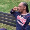 Snoop Dogg Smokes a Blunt in Front of the White House to Protest Trump