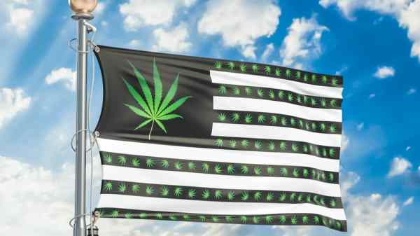 STATES Act, Which Protects Legal Cannabis Businesses, Reintroduced in Congress