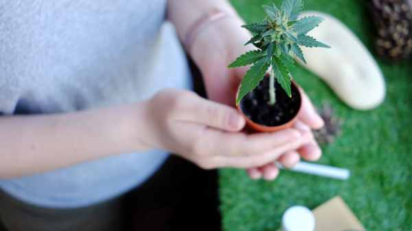 Utah Cannabis Cultivators May Be Required to Pay Over $100,000 in Fees