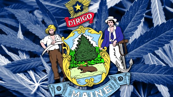 Medical Cannabis Industry Booming In Maine Despite COVID-19