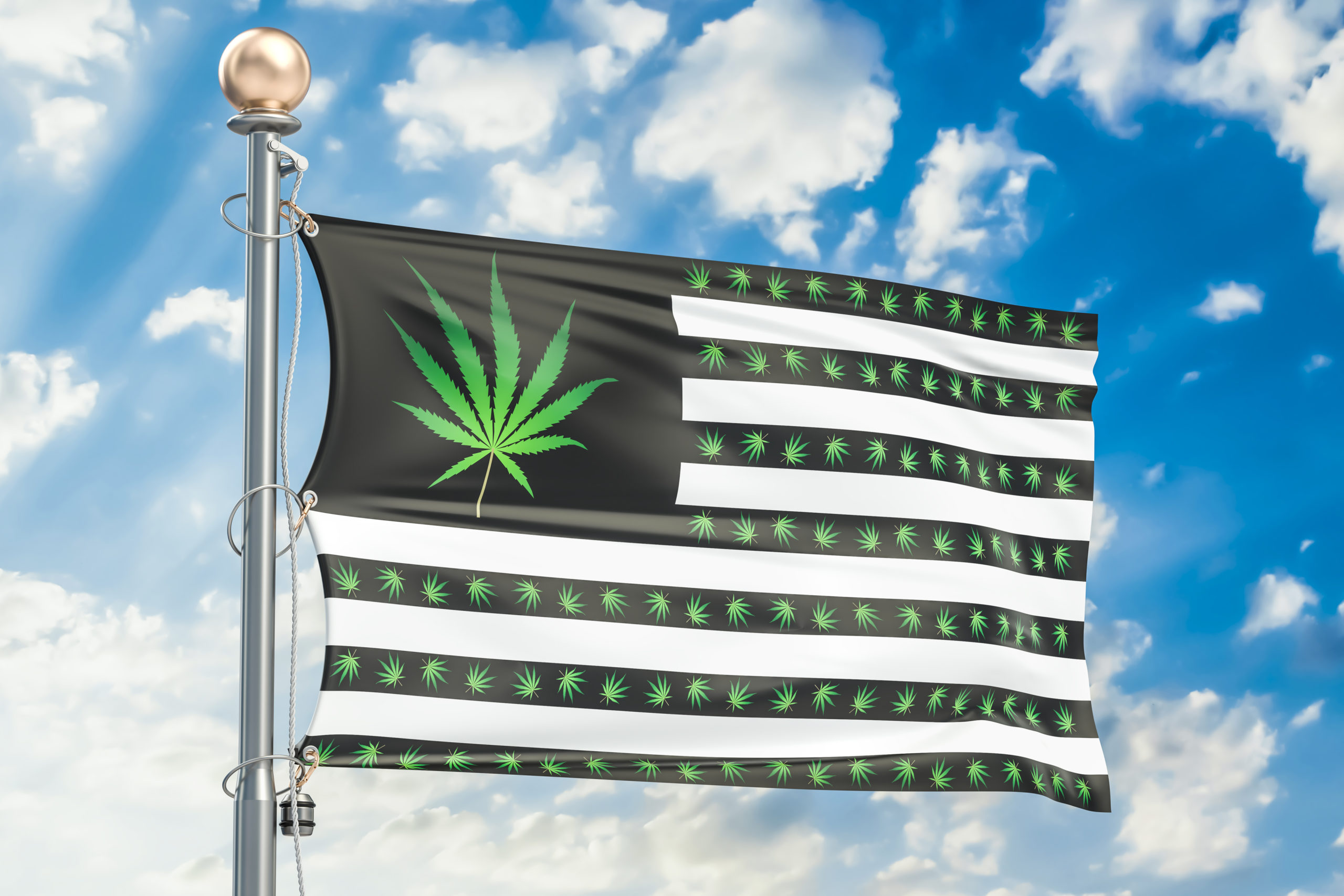 norml publishes open letter presidential candidates pledge marijuana reform featured scaled - NORML Publishes Open Letter To Presidential Candidates To Pledge Marijuana Reform