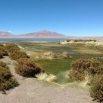 Experience South America – Atacama desert | Day 03
