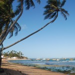 7 unforgettable beaches you must see in Brazil