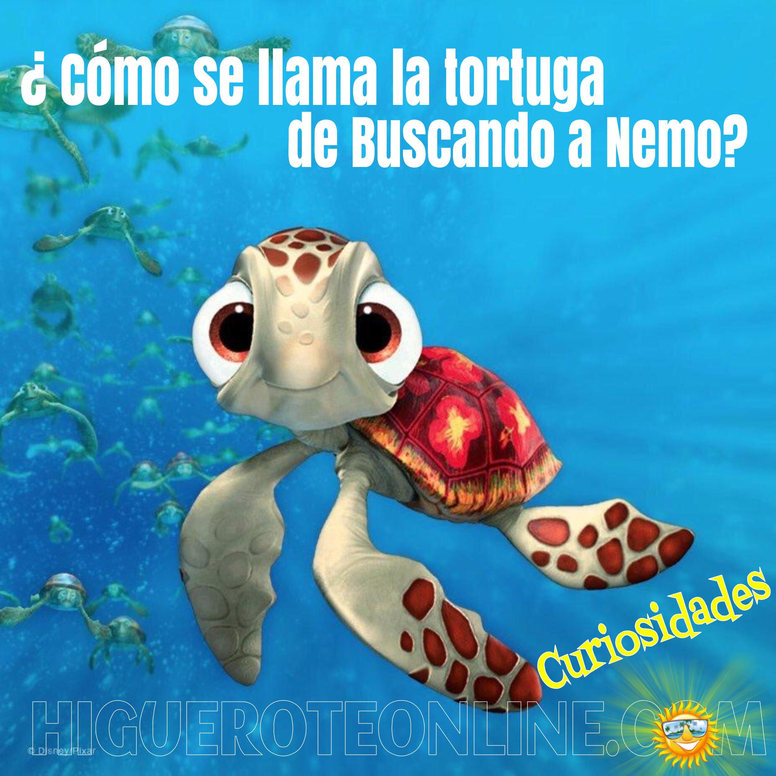Como se llama la tortuga de buscando a nemo higueroteonline for Como se llama el hotel que esta debajo del mar