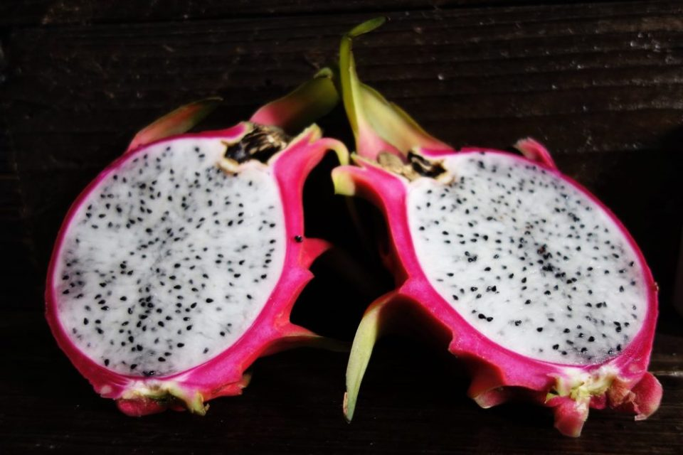 Looking for alternative sources of sugar: dragonfruit