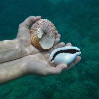 Kilometr 40 075: o równiku, jachtostopie i najlepiej strzeżonych plażach świata