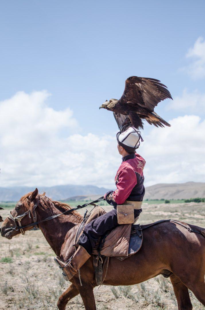 Co warto w Kirgistanie: sokolnik