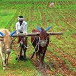 कृषि पर निबंध | Essay On Agriculture In Hindi | Farming In India