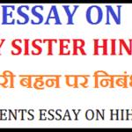 Essay on My Sister in Hindi – मेरी बहन पर निबंध