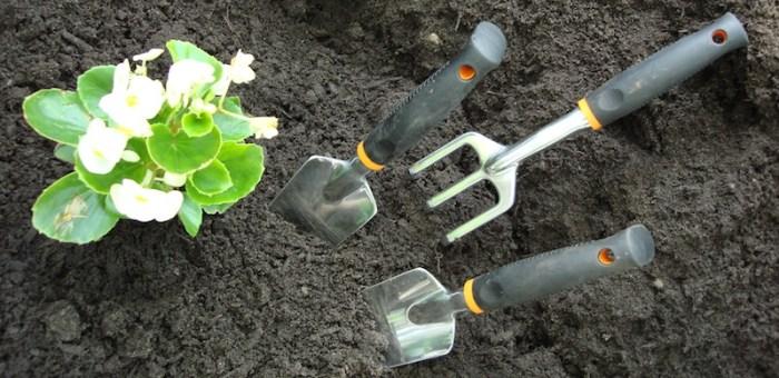かぶれに気をつけたい植物と毛虫