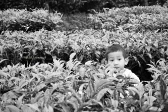 adlan, the lost boy