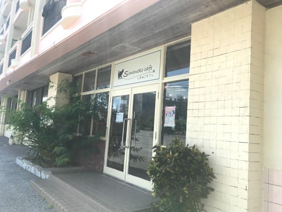 shimanekocafe1