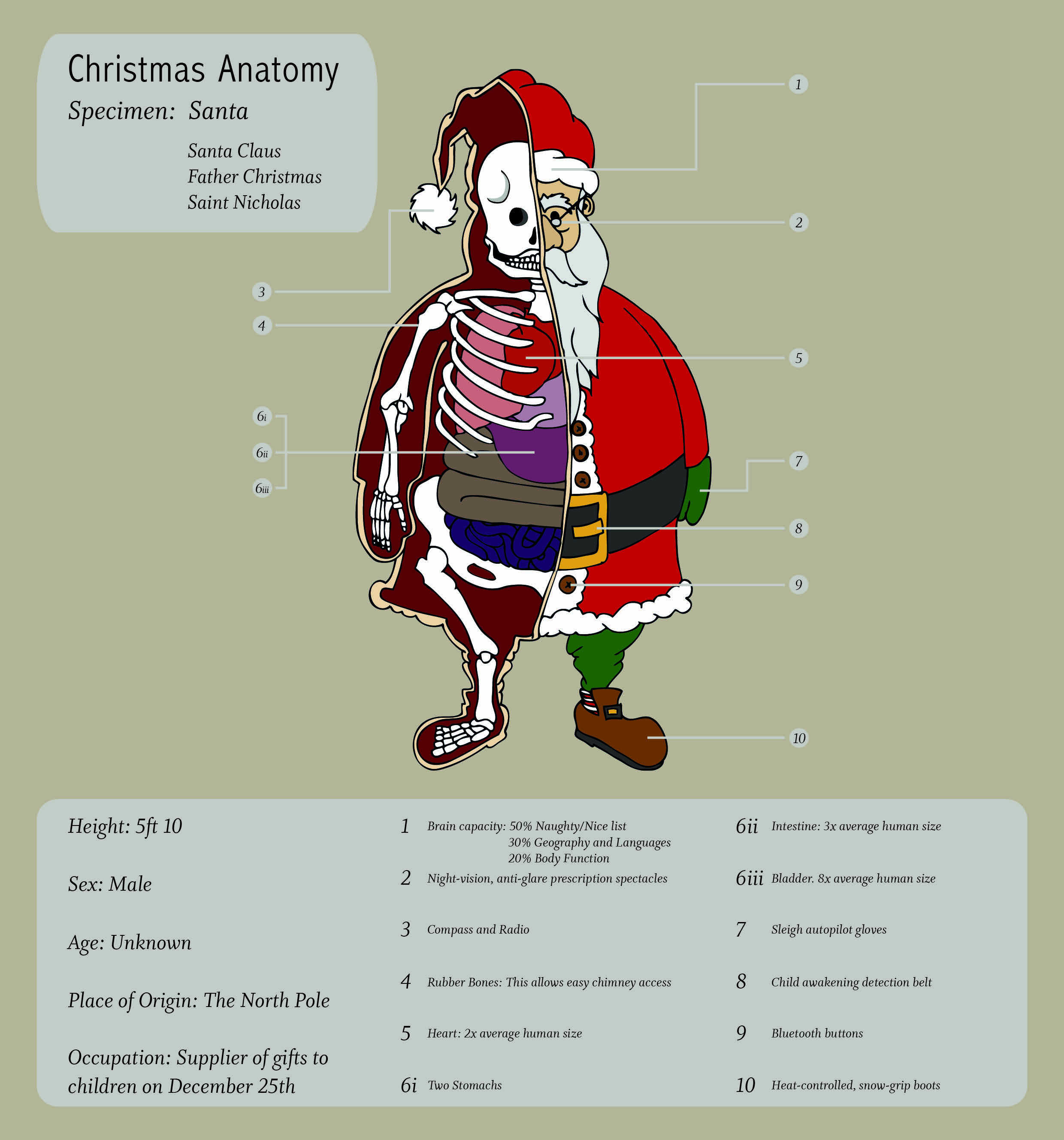 Christmas Anatomy Cards Hikcupdesigns