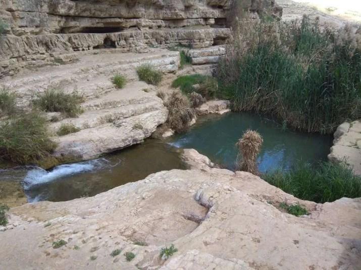 Casacde and pool near Ein Prat