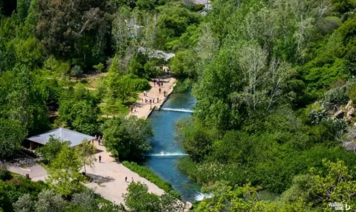 Banyas (Hermon) Springs from Above