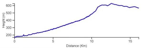 Elevation Graph INT near Arad
