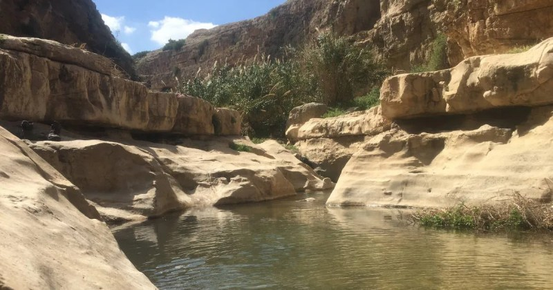 A Hike in Wadi Qelt (Ein Prat) will take you through Springs, Pools, deep Canyons and an old Monasteries