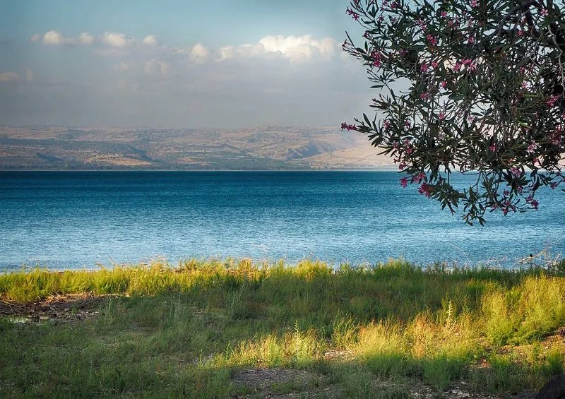 The Sea of Galilee from Capernaum