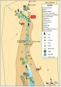 Ein Avdat NAtional Park hiking map in English