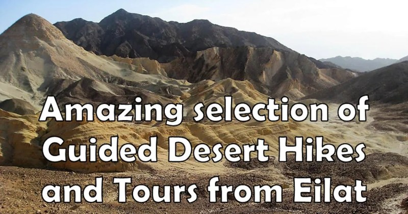 Desert Hikes and tours from eilat