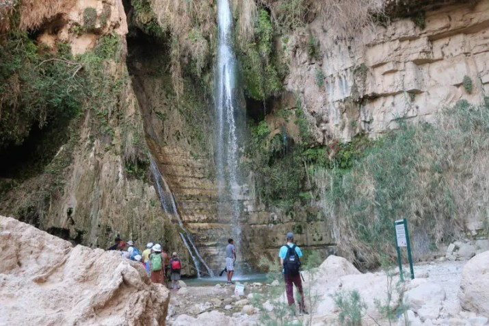 Wadi David waterfall. Ein-Gedi, Israel.
