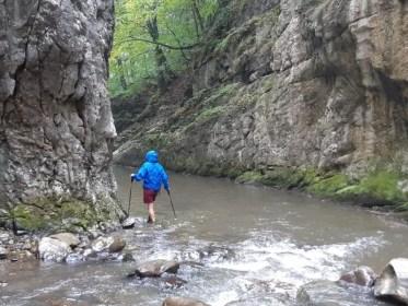 הולכים רגלית בתוך המים בנחל רמיטולו ברומניה