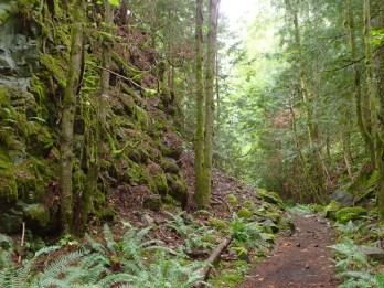 Path through a canyon.