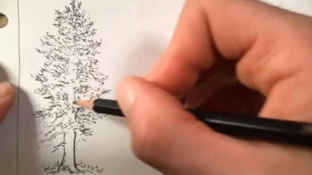 how to draw a tree - step 4