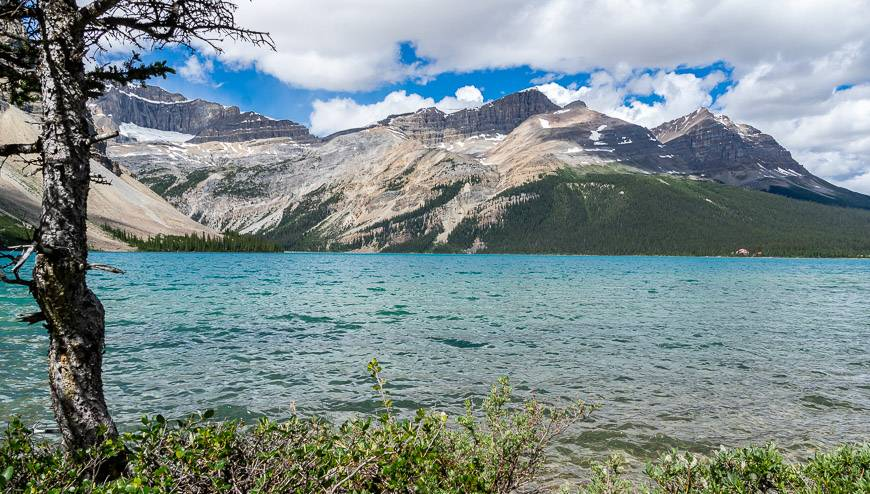 Explore a spectacular landscape along the Icefields Parkway