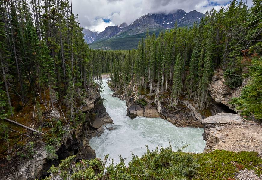 Sunwapta Falls hike on the Icefields Parkway