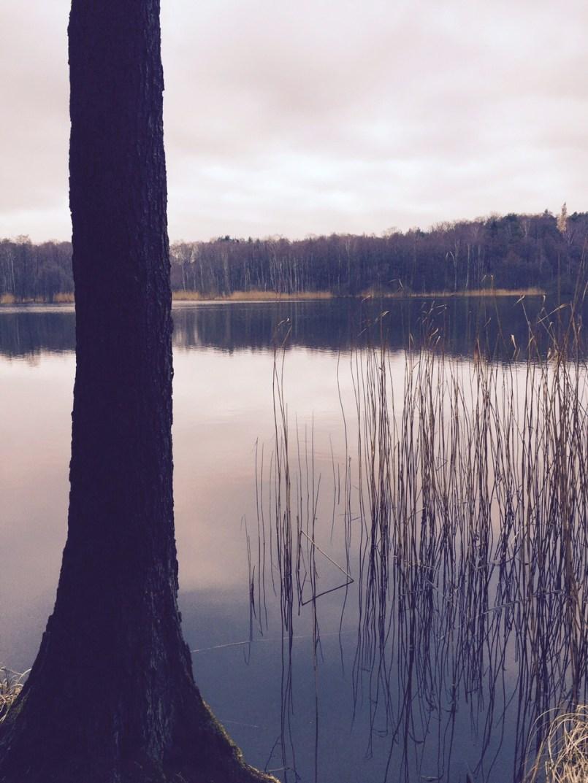 lake Bogensee