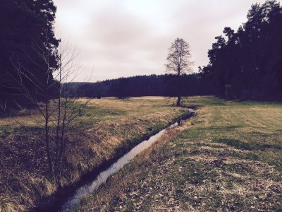 creek near Bogensee