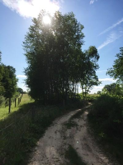 Döberitzer Heide