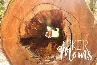 Lost Lake Trail Hiking Hiker Moms Hood River Oregon 18